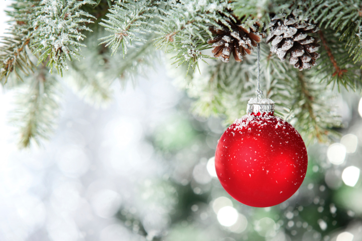 signet holiday catalog